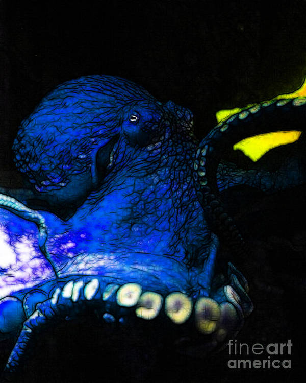 Octopus Poster featuring the photograph Creatures Of The Deep - The Octopus - V6 - Blue by Wingsdomain Art and Photography
