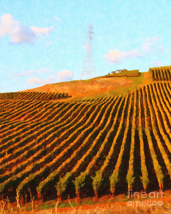 Landscape Poster featuring the photograph Napa Valley Vineyard . Portrait Cut by Wingsdomain Art and Photography