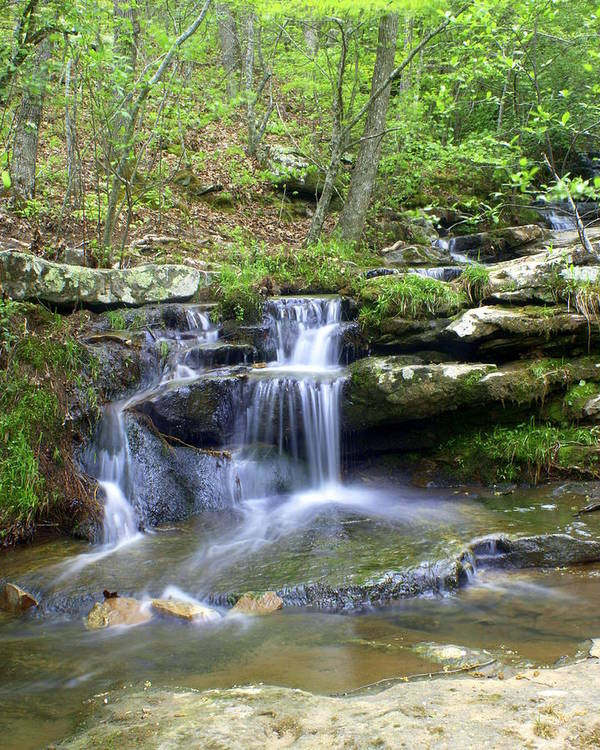 Waterfall Poster featuring the photograph Hidden Falls 1 by Marty Koch