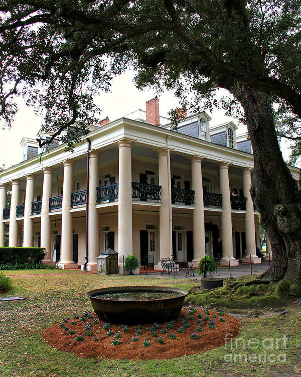 Oak Alley Poster featuring the photograph Oak Alley Plantation by Perry Webster