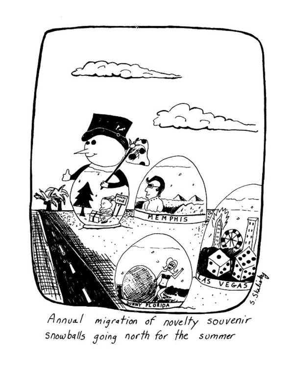 Auto Poster featuring the drawing Annual Migration Of Novelty Souvenir Snowballs by Stephanie Skalisk