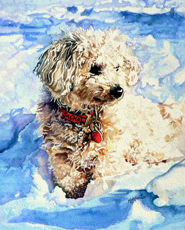 Dog Portrait Poster featuring the painting Sacha by Hanne Lore Koehler