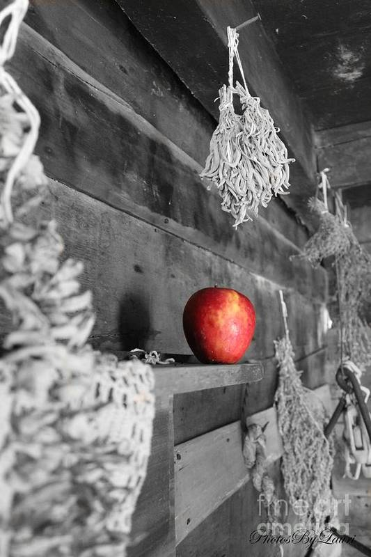 Photographs Poster featuring the photograph The Apple by Laurinda Bowling