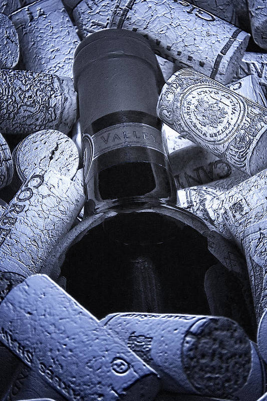 Wine Poster featuring the photograph Buried Wine Bottle by Tom Mc Nemar