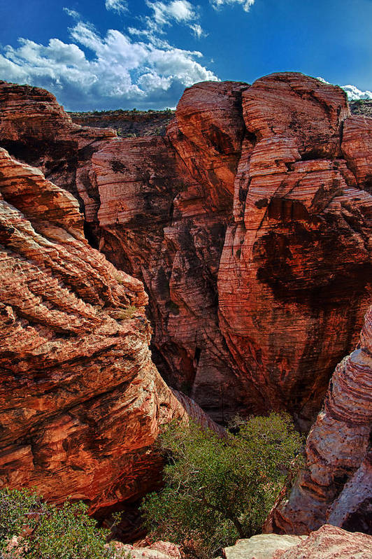 Red Rock Canyon Photographs Poster featuring the photograph Canyon Glow by Rick Berk