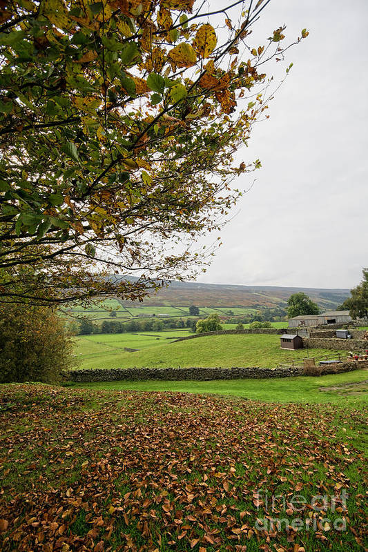 Healaugh Swaledale Poster featuring the photograph Healaugh, Swaledale by Smart Aviation