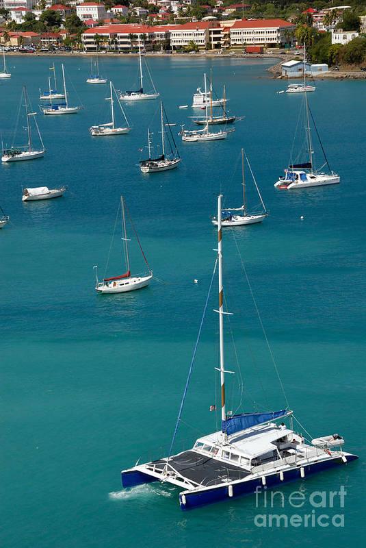 Azure Poster featuring the photograph Catamaran St Thomas Usvi by Amy Cicconi