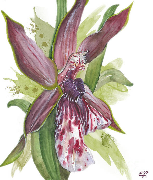 Orchid Poster featuring the painting Flower Orchid 10 Elena Yakubovich by Elena Yakubovich