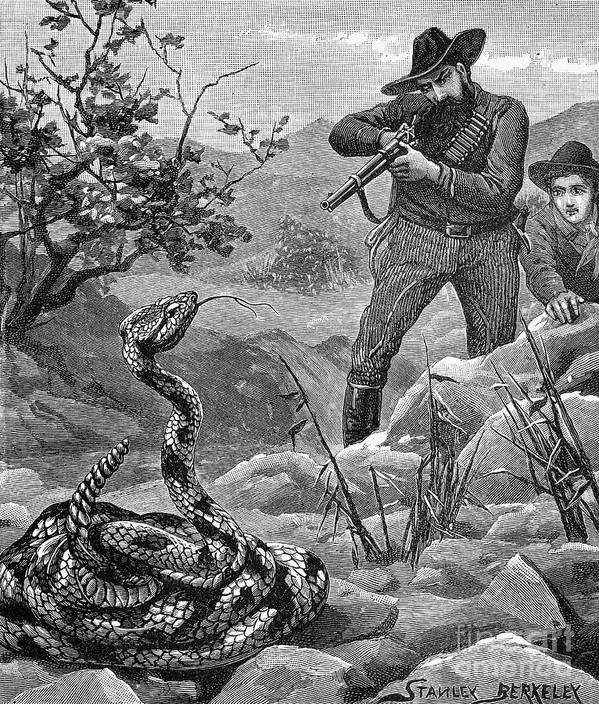 Image result for rattlesnake and shotgun