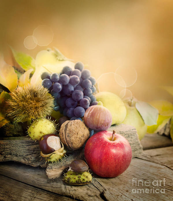 Apple Poster featuring the photograph Autumn Fruit by Mythja Photography