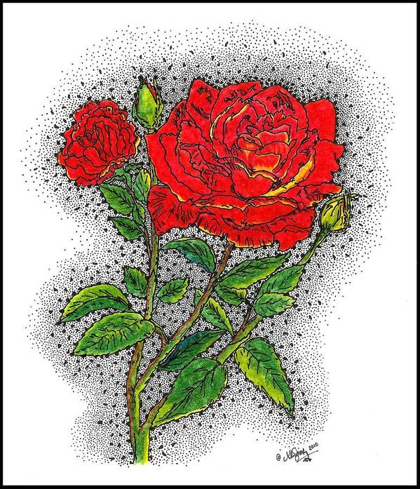 drawn Roses Poster featuring the drawing Blooming Too by Glenn McCarthy Art and Photography