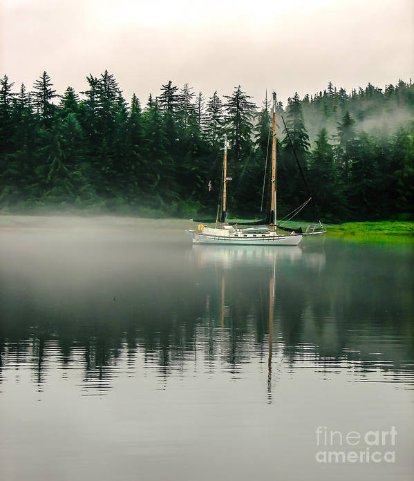Sailboat Poster featuring the photograph Morning Fog by Robert Bales