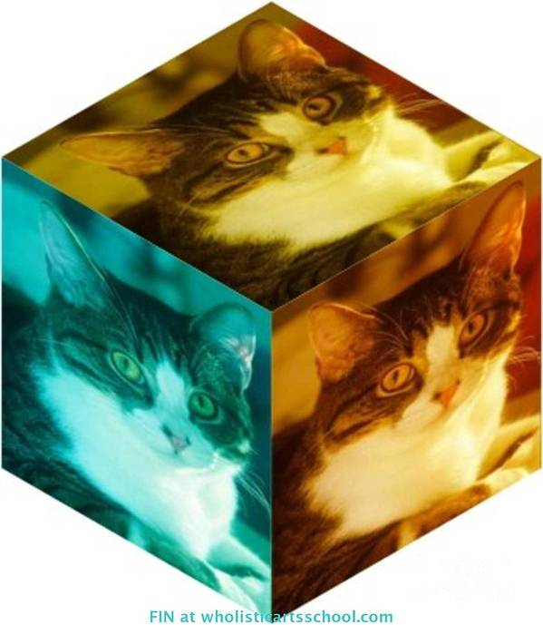 Cat Poster featuring the digital art R U Square by PainterArtist FIN