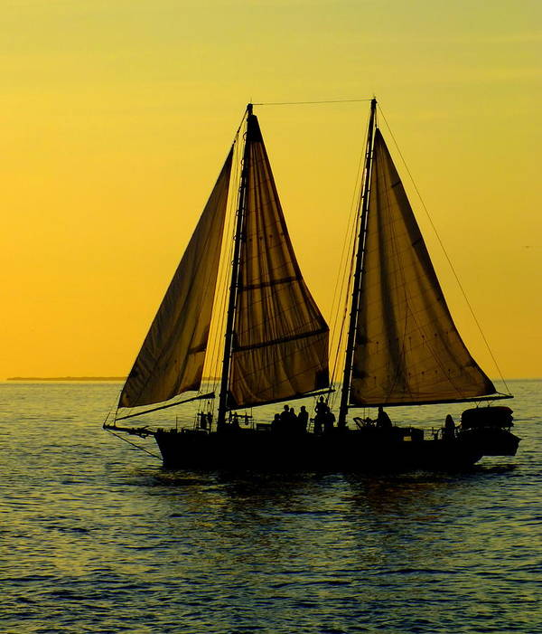 Key West Poster featuring the photograph Sunset Celebration by Karen Wiles