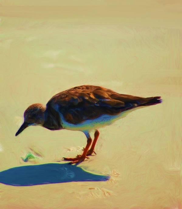 Fine Art Poster featuring the photograph Bird On Daytona Beach by David Lane