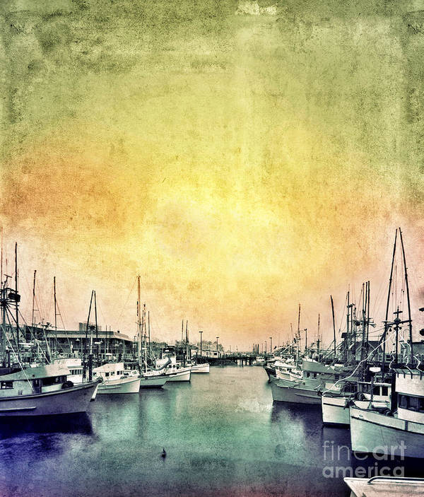 Coast Poster featuring the photograph Boats In The Harbor by Jill Battaglia