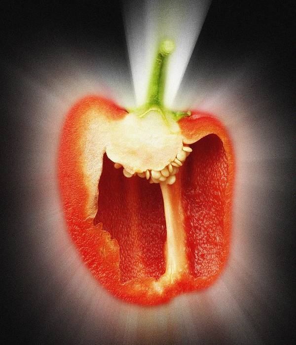 Food Poster featuring the photograph Red Pepper by Victor De Schwanberg
