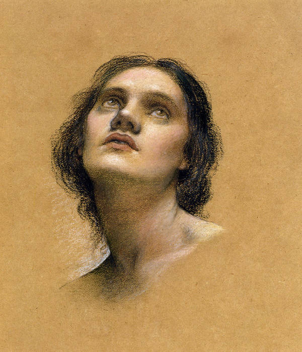 Female; Gaze; Drawing; Upturned Face Poster featuring the pastel Study Of A Head by Evelyn De Morgan