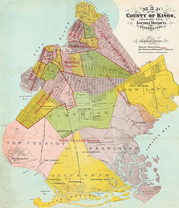 Brooklyn Poster featuring the photograph 1869 King County Map by Rospotte Photography