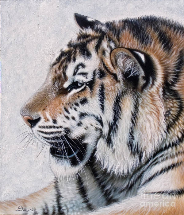 Acrylic Poster featuring the painting Amur by Sandi Baker