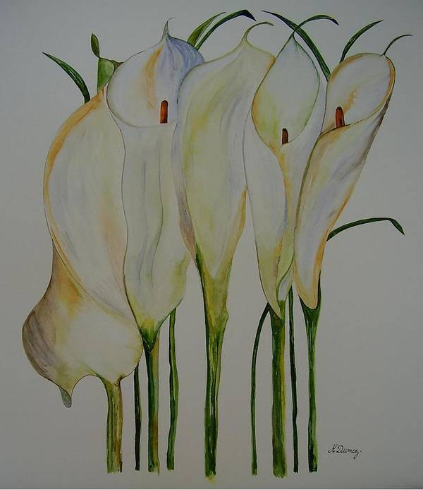 Flowers Poster featuring the painting Callas by Murielle Hebert