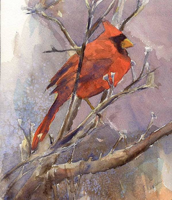 Nature Poster featuring the painting Cardinal - Male by Elizabeth Evans