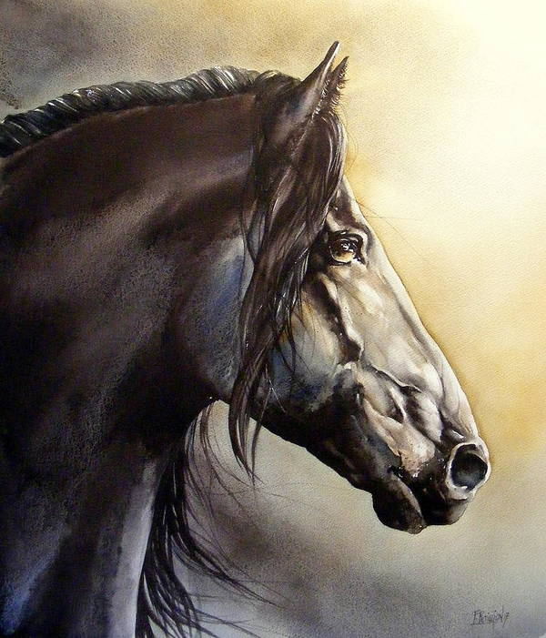 Watercolor Poster featuring the painting Frison by Fabien Petillion