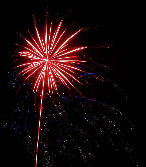 Fireworks Poster featuring the photograph Peppermint Pom Pom by Kami McKeon