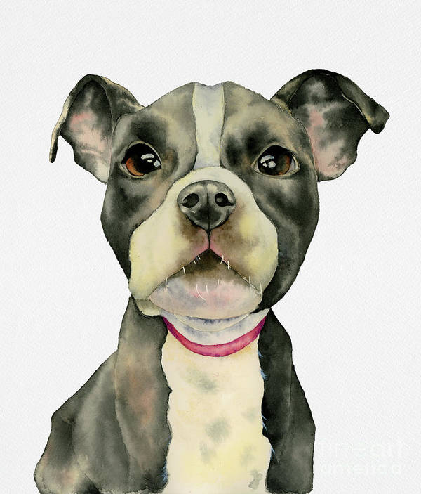 American Pit Bull Terrier Dog Poster featuring the painting Puppy Eyes by NamiBear
