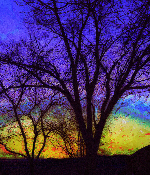 Sunrise Poster featuring the photograph Rainbow Morning by Julie Lueders