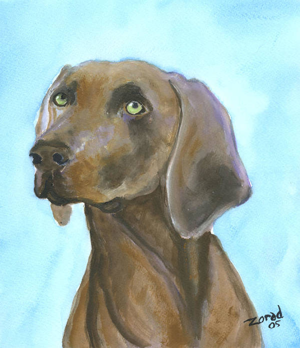Dog Art Poster featuring the painting Weimarainer Dog Art by Mary Jo Zorad
