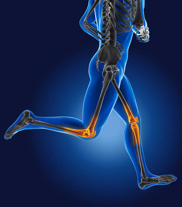 Human Poster featuring the digital art 3d Running Medical Man by Kirsty Pargeter