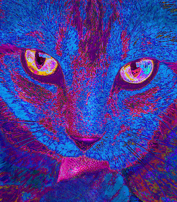 Psychedelic Poster featuring the photograph Psychedelic Kitty by Jane Schnetlage