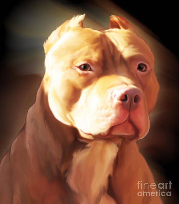 Spano Poster featuring the painting Red Pit Bull By Spano by Michael Spano