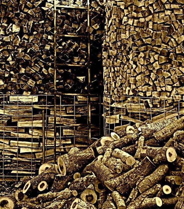 Nature Poster featuring the photograph Stockpile by Chris Berry
