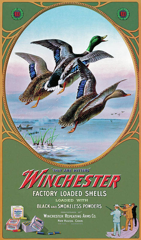 Duck Poster featuring the painting They Are Hitters by Lynn Bogue Hunt