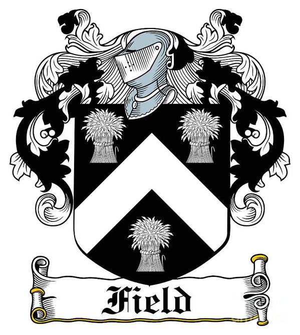 Field Poster featuring the digital art Field Coat Of Arms I Irish by Heraldry