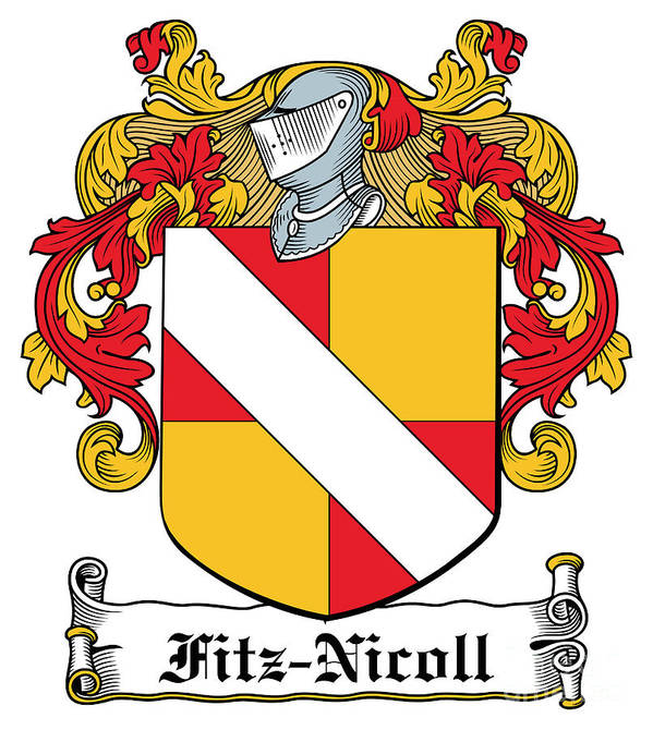 Fitz-nicoll Poster featuring the digital art Fitznicoll Coat Of Arms Irish by Heraldry