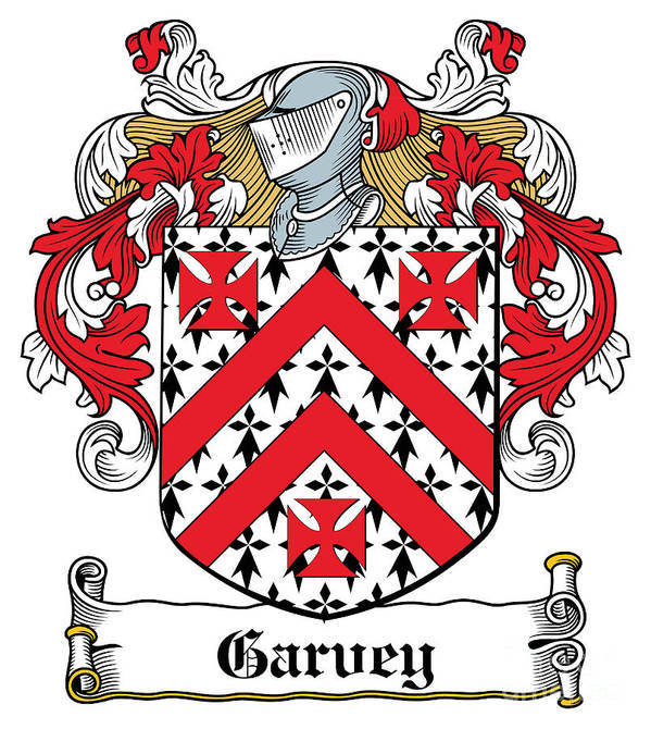 Garvey Poster featuring the digital art Garvey Coat Of Arms Down Ireland by Heraldry