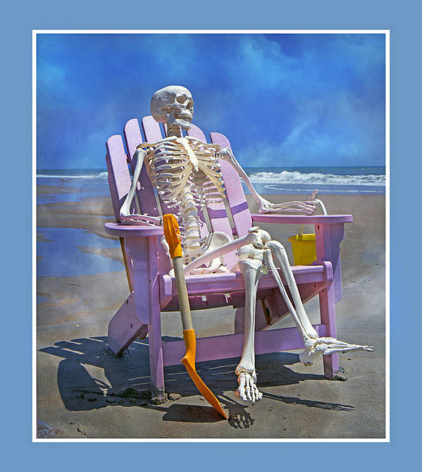 Skeleton Poster featuring the photograph Sam Enjoys The Beach -- Again by Betsy Knapp