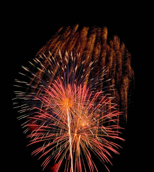 Fireworks Poster featuring the photograph Shower Of Fireworks by Devinder Sangha