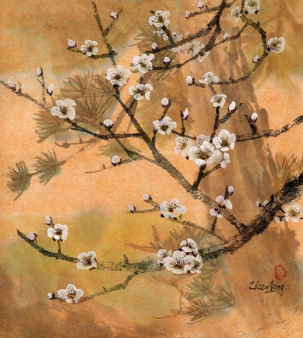 White Plum Blossoms Poster featuring the painting White Plum Blossoms With Pine Tree by Eileen Fong