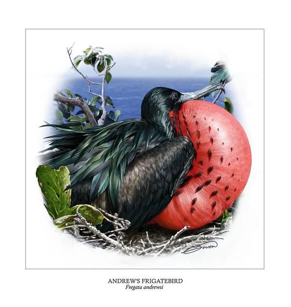 Digital Art Poster featuring the digital art Andrews Frigatebird Fregata Andrewsi 3 by Owen Bell