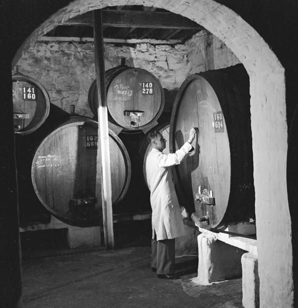 Mature Adult Poster featuring the photograph Wine Vaults by Ejor