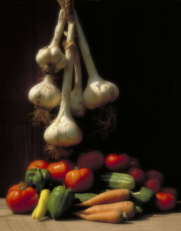 Tomatoes Poster featuring the photograph Summer Harvest by Garry McMichael