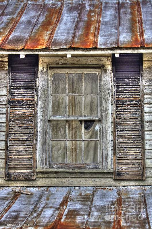 Rusted Tin Roof Poster featuring the photograph I'm Watching You by Benanne Stiens