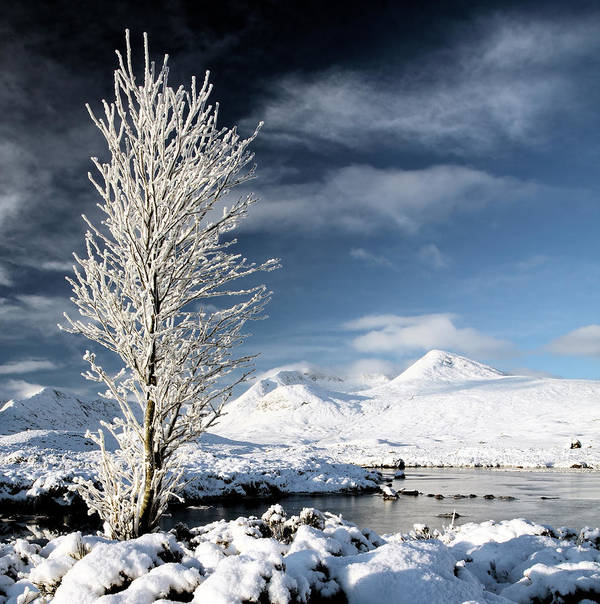 Snow Covered Landscape Poster featuring the photograph Glencoe Winter Landscape by Grant Glendinning