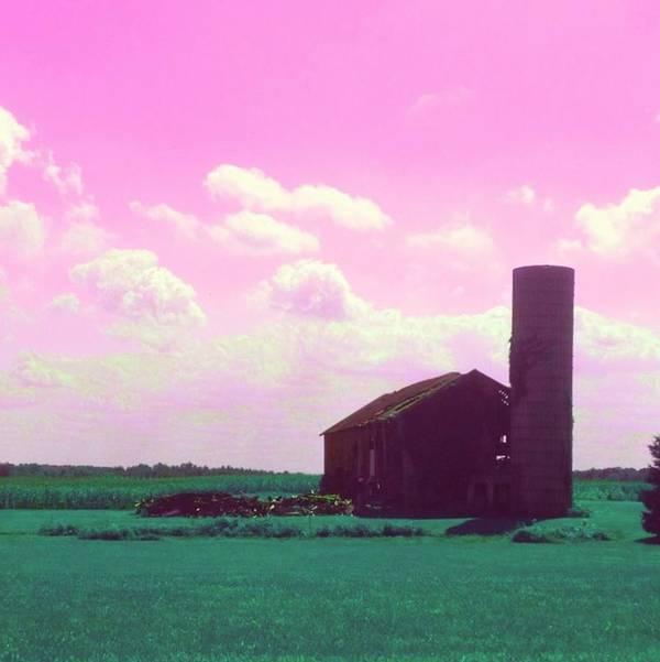 Pink Poster featuring the photograph Pink Sky by Lora Mercado