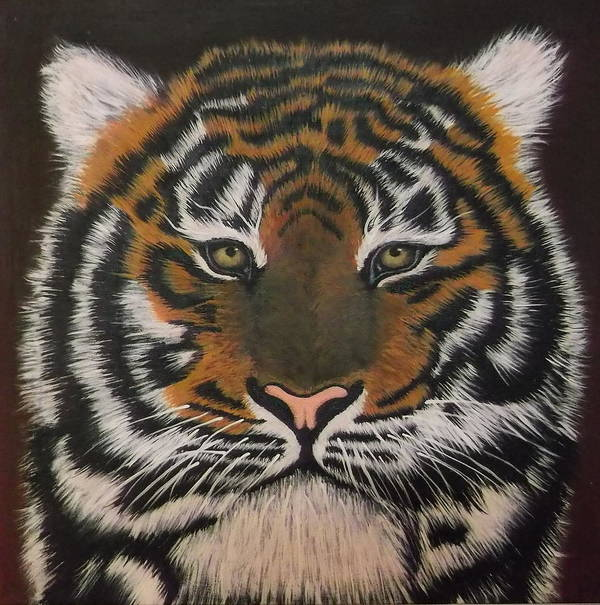 Tiger Poster featuring the painting Tiger Eyes by Amanda Machin
