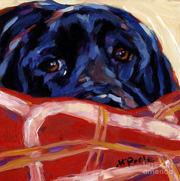 Black Labrador Retriever Poster featuring the painting Under Cover by Molly Poole